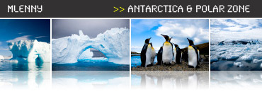 Antarctica Photo Collection