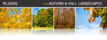 Autumn - Fall Photo Collection