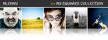 Square Format Photo Collection
