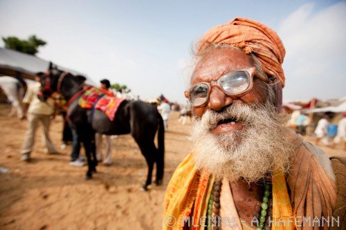 Pushkar fair camel and horse market in india.
