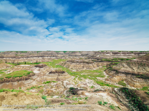 Horseshoe Canyon Formation, Drumheller, Alberta, Canada