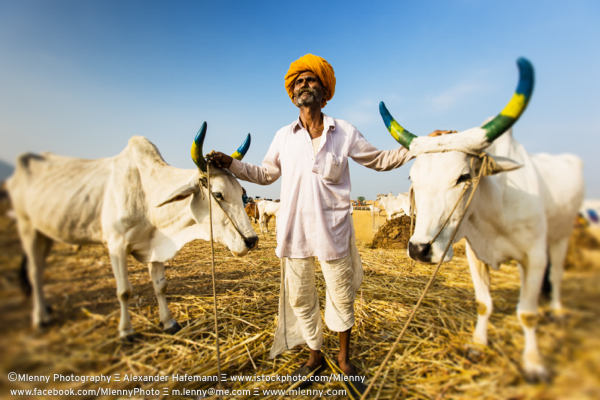 Proud Indian Farmer, Pushkar, India