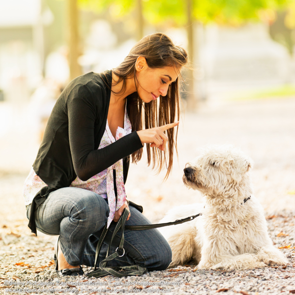 Young woman training her dog in the park