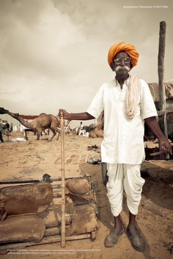 Pushkar Fair Indian Camel Market India Portrait