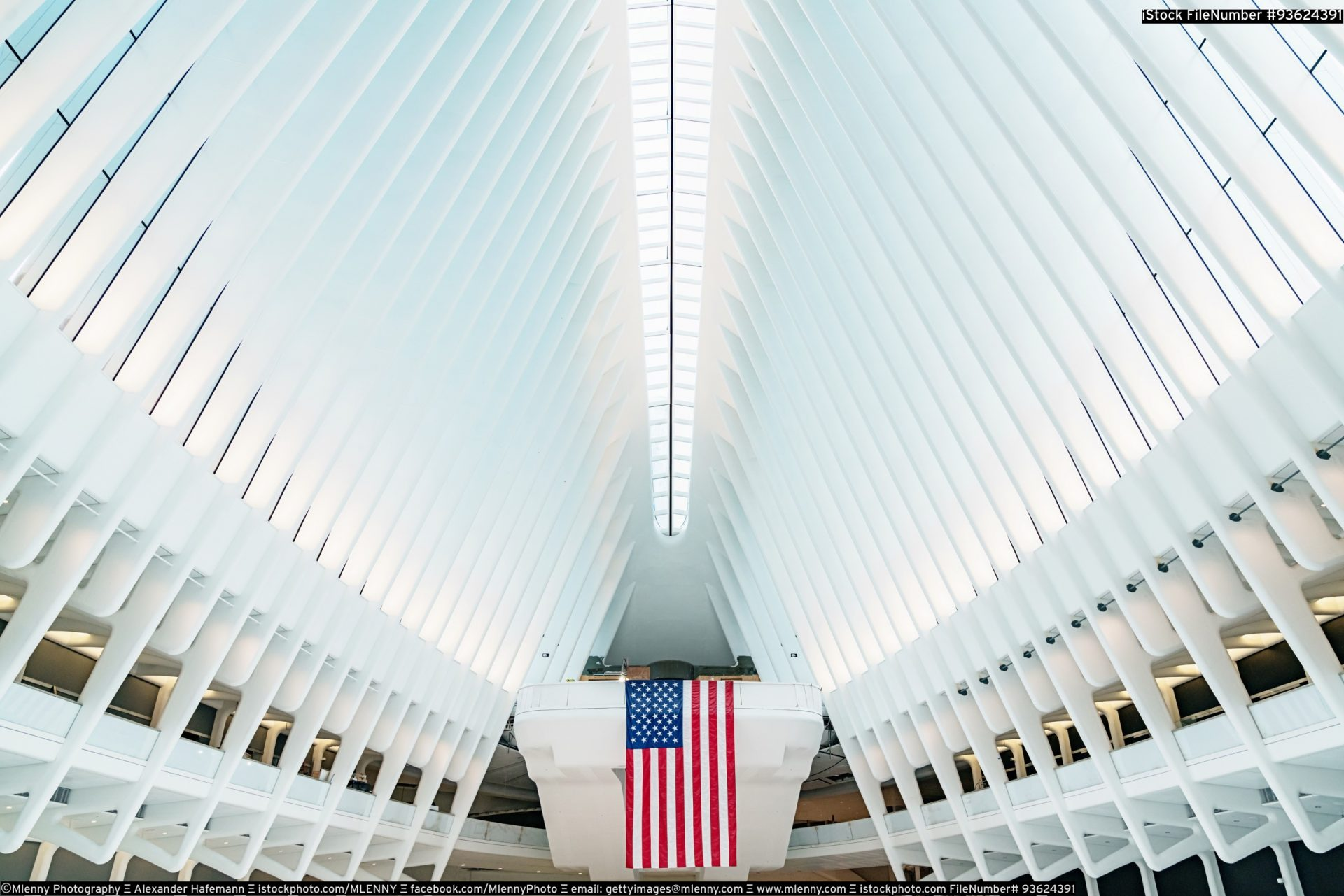 Oculus New York City WTC Transportation Hub